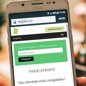 Novo registro ong.br